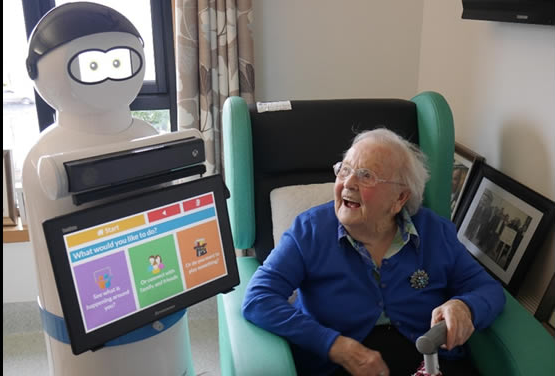 MARIO the companion robot for people with dementia